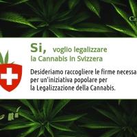 Iniziativa popolare per la Legalizzazione della Cannabis in Svizzera.