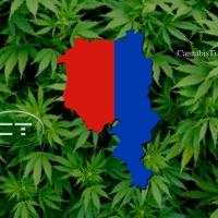 Una battaglia responsabile per regolamentare la cannabis
